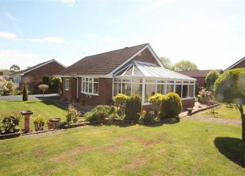 Thumbnail 3 bed detached bungalow for sale in School Lane, St. Martins, Oswestry