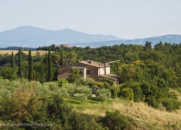 Thumbnail 3 bed farmhouse for sale in S.P. 26, Asciano, Tuscany