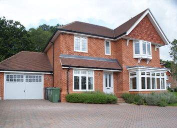 Thumbnail 4 bed detached house to rent in Dagden Road, Shalford