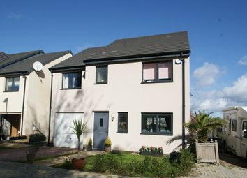 Thumbnail 4 bed detached house for sale in Palm Tree View, Paignton