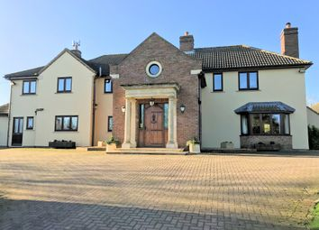 Thumbnail 4 bed detached house for sale in ., Gunby, Grantham