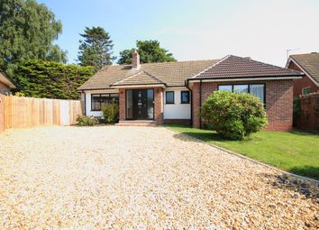 Thumbnail 3 bed detached bungalow to rent in Springfield Close, Lymington
