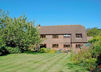 Thumbnail 4 bed detached house for sale in Burley Road, Winkton, Christchurch
