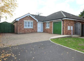 Thumbnail 3 bedroom detached house for sale in Bolle Road, Alton, Hampshire