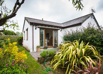 Thumbnail 3 bed barn conversion for sale in Bridgerule, Holsworthy