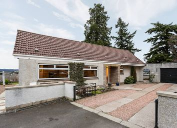 Thumbnail 3 bed bungalow for sale in Viewmount, Forfar, Angus