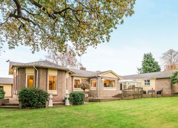 Thumbnail 4 bed detached bungalow for sale in Netherstowe, Lichfield