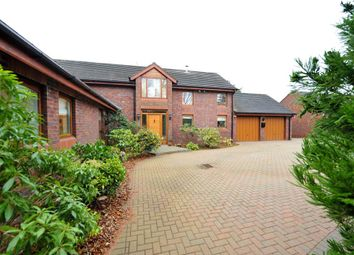 Thumbnail 4 bed detached house for sale in 5 Shaneoguestown Road, Templepatrick