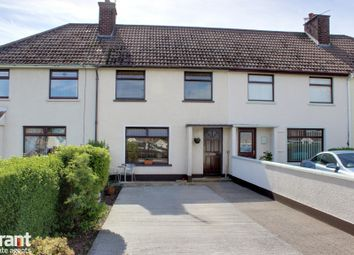 Thumbnail 3 bed terraced house for sale in Islandview Road, Greyabbey