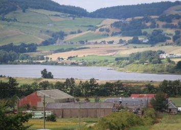 Thumbnail Land for sale in Newburgh, Cupar