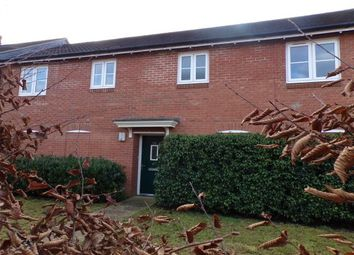 Thumbnail 2 bed flat to rent in Primrose Place, Salisbury