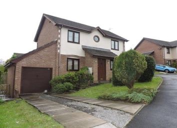 Thumbnail 3 bed detached house to rent in Nant Arw, Capel Hendre, Ammanford