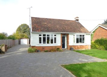 Thumbnail 3 bedroom detached bungalow for sale in Old London Road, Copdock, Ipswich
