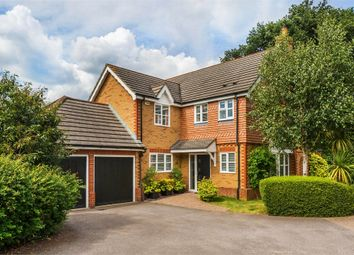 Thumbnail 4 bedroom detached house to rent in Maitland Close, Walton-On-Thames, Surrey