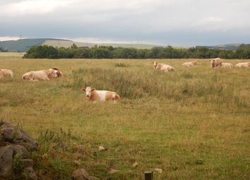 Thumbnail Land for sale in Meikle Wartle, Inverurie