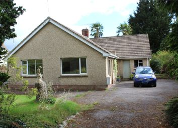 Thumbnail 4 bed bungalow for sale in Tiverton Road, Cullompton, Devon