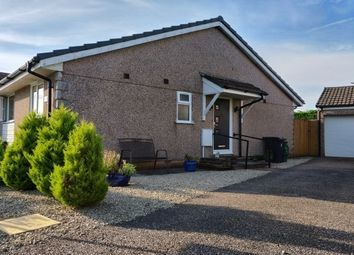 Thumbnail 2 bed bungalow to rent in Whitebeam Grove, Dunkeswell, Honiton
