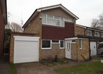 Thumbnail 4 bed detached house to rent in Florence Avenue, Maidenhead