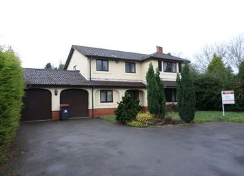 Thumbnail 4 bedroom detached house to rent in Verbena Way, Great Hay, Telford