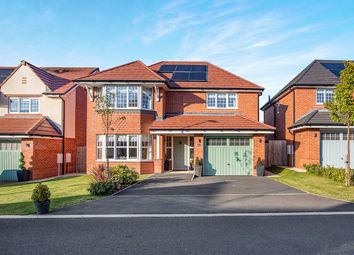 Thumbnail 4 bedroom detached house for sale in Hampton Grove, Leyland