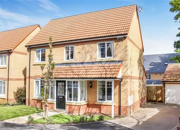 Thumbnail 5 bedroom property for sale in York Rise, Bideford
