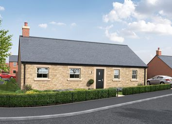 Thumbnail 3 bed detached bungalow for sale in Creighton Place, Holmefield, Embleton
