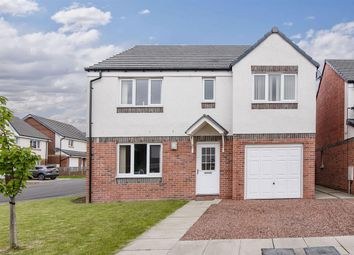 Thumbnail 5 bed detached house for sale in Mcnee Place, Redding, Falkirk