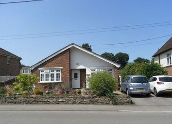 Thumbnail 3 bed bungalow for sale in Thursley Road, Elstead, Godalming