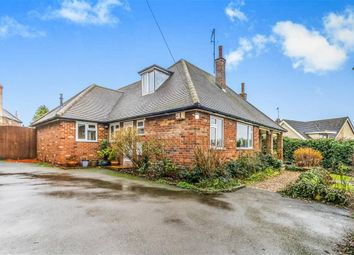 Thumbnail 5 bed detached bungalow for sale in Little Lane, Wollaston, Wellingborough