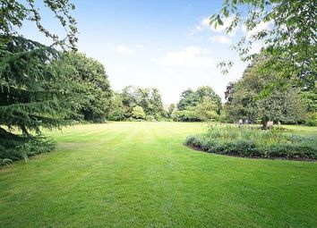 Thumbnail 2 bedroom flat to rent in South Edwardes Square, Kensingon