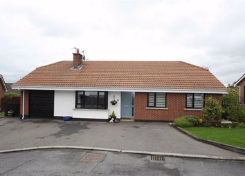 Thumbnail 3 bed detached bungalow for sale in Clanwilliams Court, Ballynahinch, Down