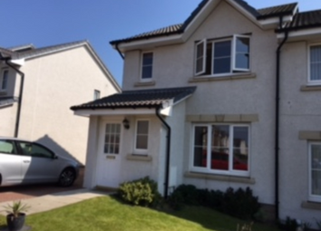 Thumbnail Semi-detached house to rent in Provost Milne Gardens, Arbroath, 5Fg