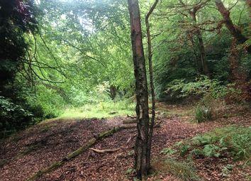 Thumbnail Land for sale in East Broomhill, Sandhills, Godalming