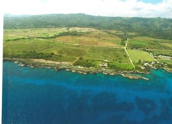 Thumbnail Land for sale in St Ann, Saint Ann, Jamaica