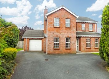 Thumbnail 4 bed detached house to rent in Beechfield Lodge, Aghalee, Craigavon