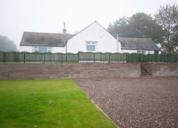 Thumbnail 4 bed detached house to rent in Hodgeton Farm, Inverkeilor, Angus