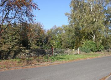 Thumbnail Land for sale in Primrose Wood, Crich Lane, Belper, Derbyshire