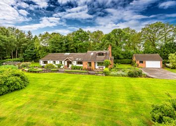 Thumbnail 5 bed detached bungalow for sale in Bolas Road, Ercall Heath
