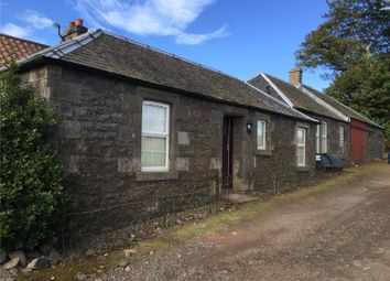 Thumbnail 3 bed detached house to rent in Newton Hall Farmhouse, Kennoway, Leven, Fife