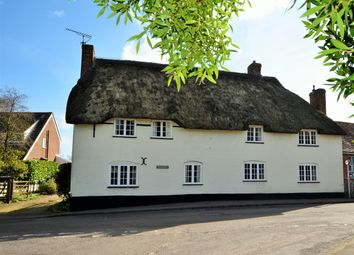 Thumbnail 4 bed cottage for sale in The Cross, Okeford Fitzpaine, Blandford Forum