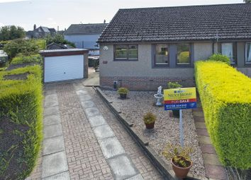 Thumbnail 2 bedroom semi-detached bungalow for sale in Elm Street, Errol, Perth