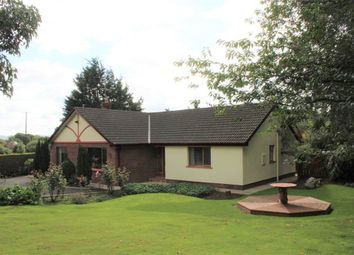 Thumbnail 4 bed bungalow for sale in 29 Mcshanes Road, Bessbrook