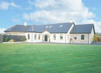 Thumbnail 5 bedroom detached house for sale in Sheepwalk Road, Lisburn, County Antrim