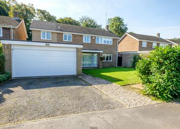 Thumbnail 4 bed detached house for sale in St. Hughs Road, Buckden, St. Neots