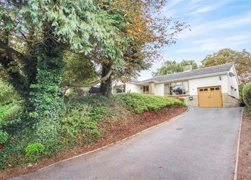 Thumbnail 3 bedroom detached bungalow for sale in Chestnut Springs, Lydiard Millicent, Wiltshire