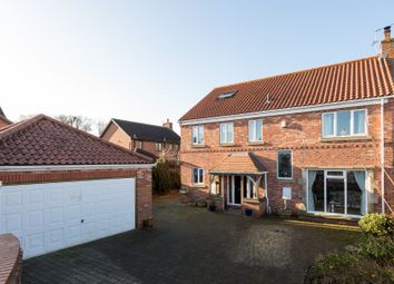 Thumbnail 5 bed detached house for sale in Sycamore View, Upper Poppleton, York