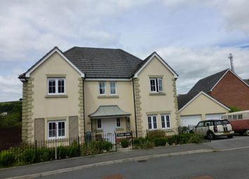 Thumbnail 4 bed detached house to rent in Llwyn Yr Eos, Carmarthen