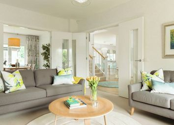 "Thumbnail 5 bed detached house for sale in ""Mcneil"" at Phoenix Rise, Gullane"