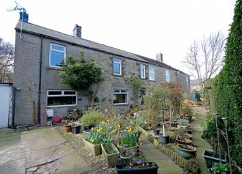 3 bed terraced house for sale in Albert Street, Amble, Morpeth NE65
