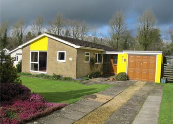 Thumbnail 3 bed detached bungalow for sale in Yarn Barton, Broadwindsor, Beaminster, Dorset